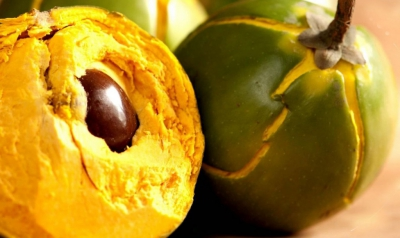 health-benefits-of-lucuma1-e1472827950974-1024x610