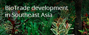 ProFound story: Biotrade development in southeast Asia