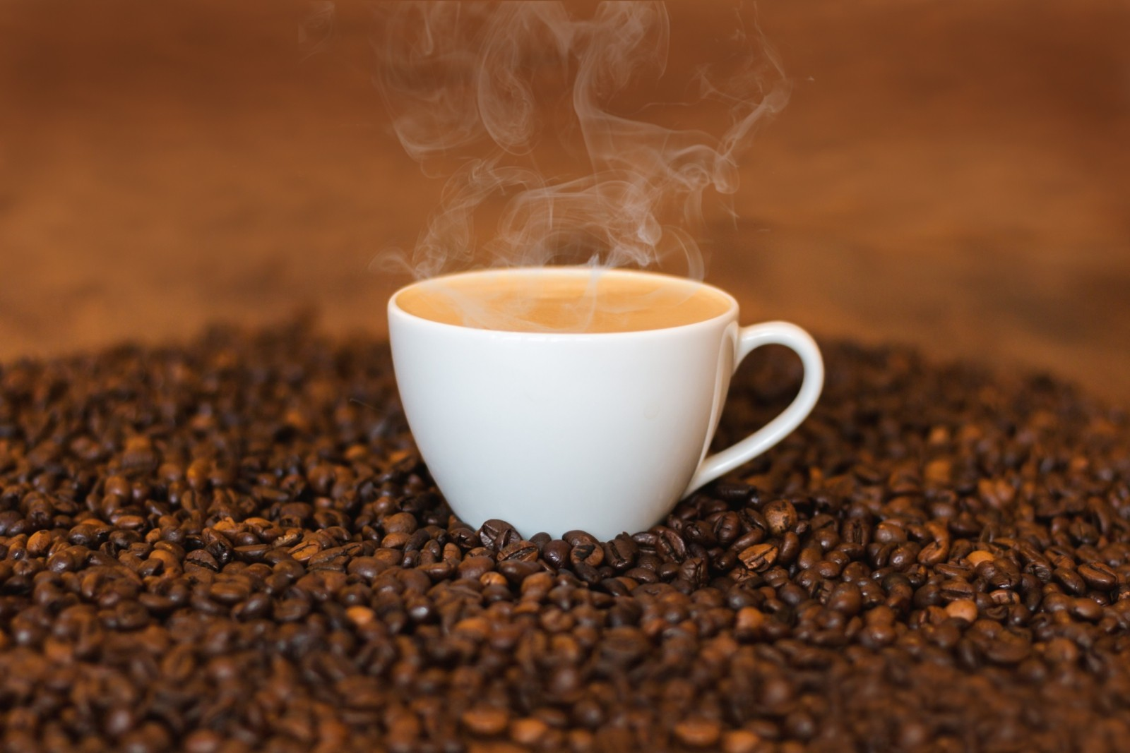 Coffee and cocoa sectors market intelligence