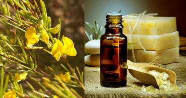Natural ingredients from South Africa