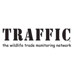 Traffic, ProFound's client
