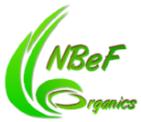 nbef-logo