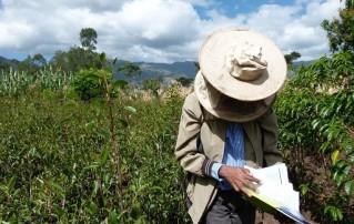 Beekeeper in Ethiopia
