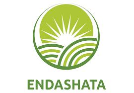 Endashata at the Organic Africa Pavilion 2020