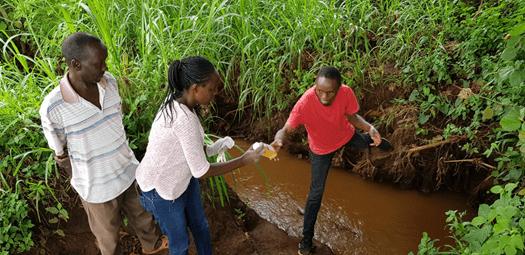 Water sample collection from a canal in Kirinyaga - Green Rhino work