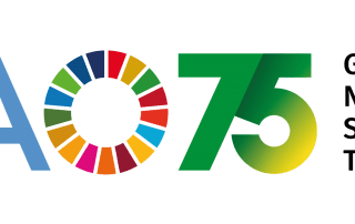 ProFound celebrates World Food Day