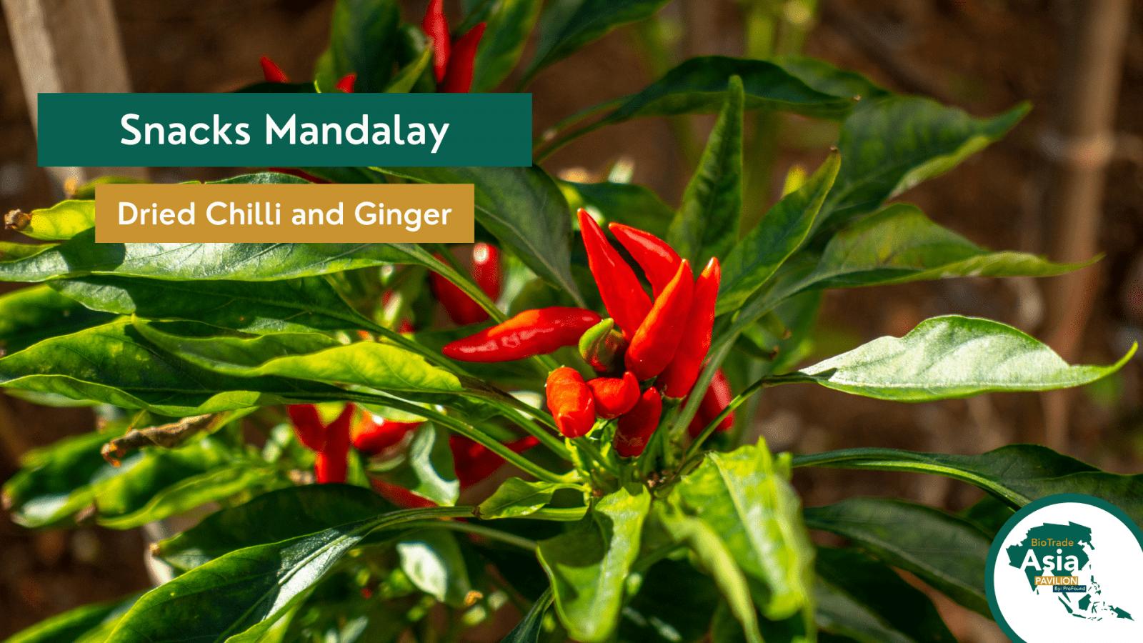 Snacks Mandalay Chilli (2)